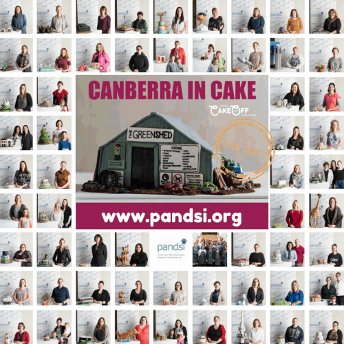 PANDSI cake off book